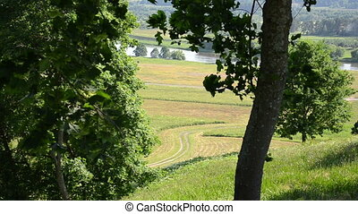 tree hill river