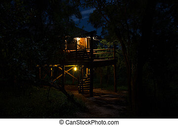 Tree House at Night - Tree House that serves as Beer Hall