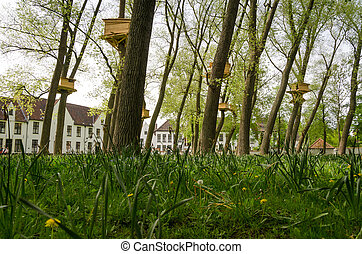Tree Houses in the Beguinage (Begijnhof) in Bruges