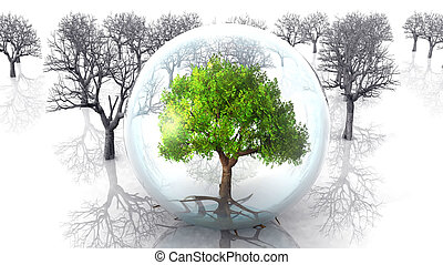 Tree in a bubble with trees in the background