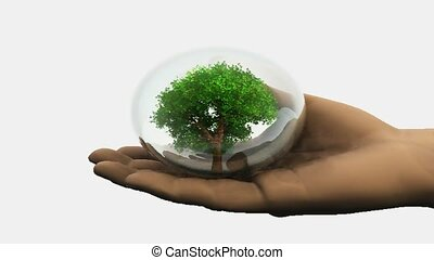 Tree in a hand