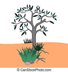 Tree in desert