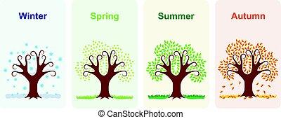 Tree in four seasons.