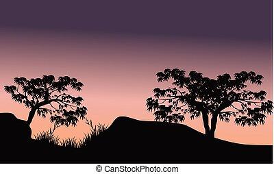 Tree in hill scenery silhouette