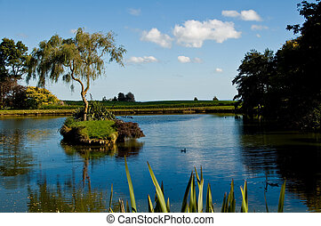 Tree in middle of pond, Hunterville, New Zealand