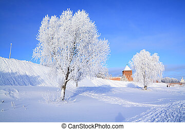 tree in snow against old fortress