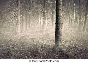 Tree in spooky gfrest