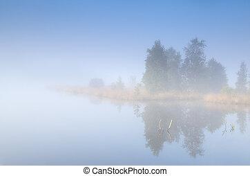 tree island on lake in fog - tree island on lake in morning...