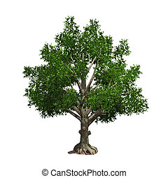 Tree isolated. Vector illustration