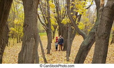Tree Lane - Peaceful couple walking unhurriedly along the...
