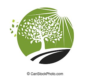 Tree leaf Logos nature element vector icon