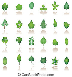 tree leafs and nature icons