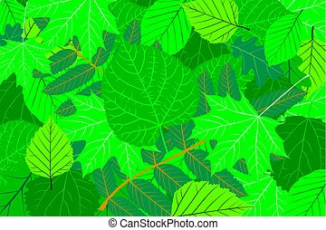 Tree leaves - green natural background - vector