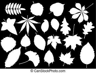 tree leaves set, silhouettes leaf,