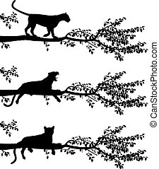Tree leopard - Set of three editable vector silhouettes of a...
