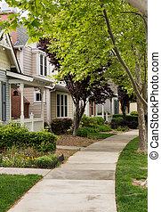 Tree lined street in California residential neighborhood -...