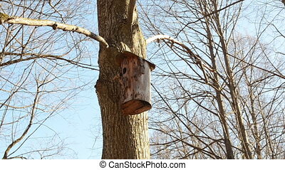 tree log nesting box - trim the tree bark made nesting boxes...