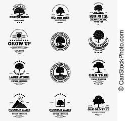 Tree Logo & Badges