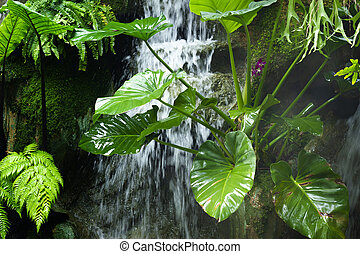 Tree near a waterfall closeup. a fresh clean waterfall surrounded by green tree.