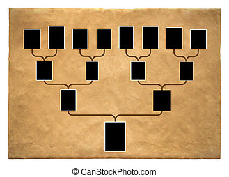 Genealogical tree of family with empty frames for photos