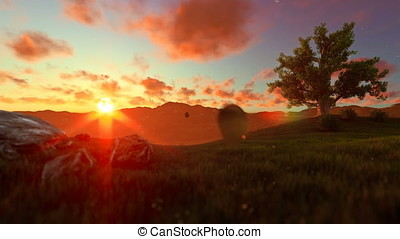 Tree of life on a green meadow, beautiful sunsetTree of life on a green meadow, beautiful sunset