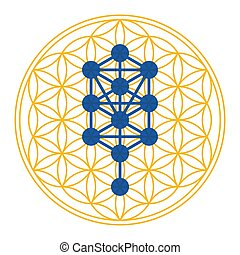 Tree of Life symbol derived from the Tree of Life. Diagram, used in mystical traditions such as Hermetic Qabalah, over golden symbol, made of overlapping circles. Sacred Geometry. Illustration. Vector