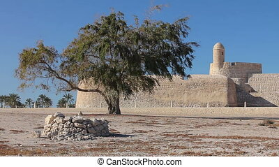 Tree of Qal'at al-Bahrain fort