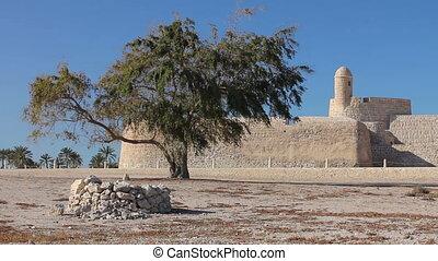 Tree of Qal'at al-Bahrain fort