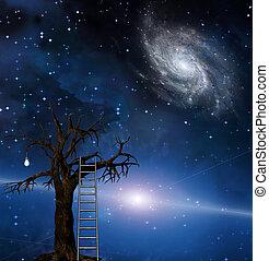 Tree of wisdom - Ladder leans on tree of wisdom