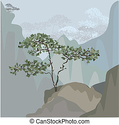 Tree on a mountain ledge