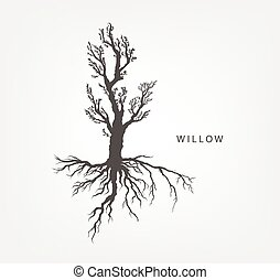 tree on a white background with leaves