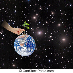Tree on Earth as a symbol of conservation. Elements of this image furnished by NASA