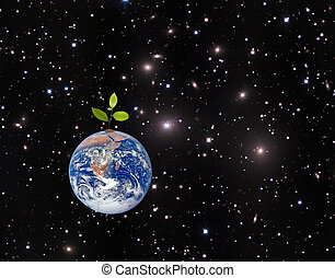 Tree on Earth as a symbol of peace and feeding the world.Elements of this image furnished by NASA