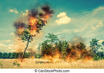 Tree on fire on a dry field in the summer