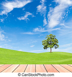 tree on green grass field with blue sky and  wood plank