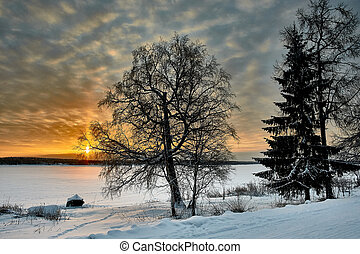 Tree on the background of sunset on the river Bank in winter