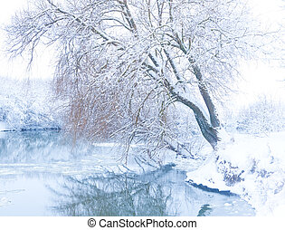 tree on the bank of the river in snowfall
