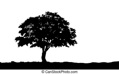 tree on the hill silhouette on vector - tree on the hill...