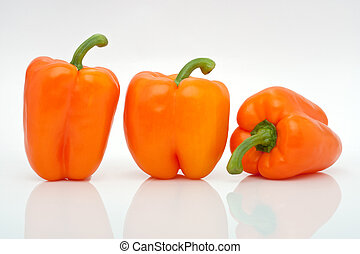 orange peppers in a row isolated on white background