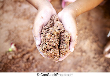 Tree planting, soil in your hand.
