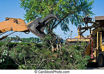 Tree Removal - Heavy duty equipment used to remove trees.