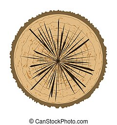 Tree Rings Background. Wood Icon.