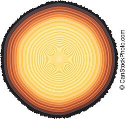 Tree rings - Editable vector illustration of tree rings on a...
