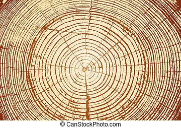 Tree rings saw cut tree trunk background. Vector...
