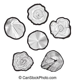 Tree-rings vector set