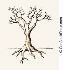 Tree Root - Sketch illustration of a tree