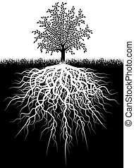 Tree roots - Illustration of a tree and its roots