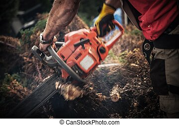 Tree Roots Removal Using Gasoline Chainsaw. Worker with Power Tool Cutting Roots Elements. Dynamic Motion Blurs.