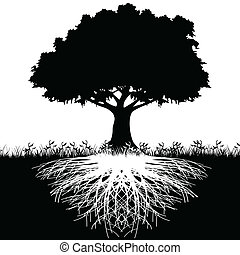 Tree roots silhouette - Illustration of silhouette tree with...