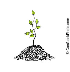Tree sapling - Illustration of tree sapling on white...